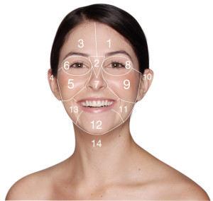 PHOTO - Dermalogica Face Mapping