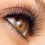 PHOTO - Eyelash